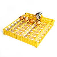 Механизм автоматического переворота яиц на 42 яйца, фото 1