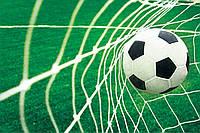 Фотообои флизелиновые 3D 312х219 см : Футбол - мяч в воротах (015CNXX)