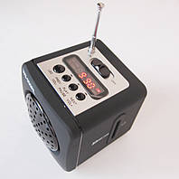 Портативная колонка-радио WS-909RL MP3/SD/USB/AUX/FM/LED, фото 1