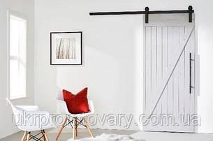 Амбарная дверь LOFT DESIGN 6316, НАТУРАЛЬНОЕ ДЕРЕВО, мебель Лофт Производство в Киеве, фото 2