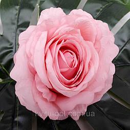 Головка розы раскрытая  пудра 11 см пудровый