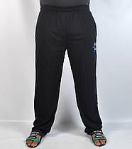 Штаны спортивные мужские трикотажные с вышитым логотипом, фото 2