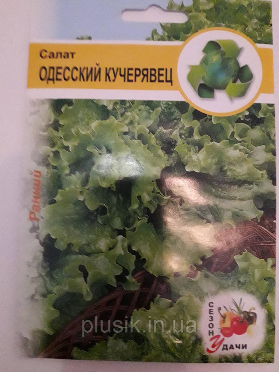 Салат Одесский Кучерявец ранний 1 г (минимальный заказ 25 пачек)