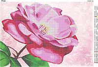 """""""Роза"""".  Схема для вышивки бисером А2."""