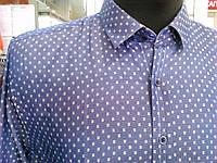 Рубашка мужская длин/рукав синяя Турция