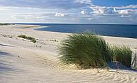 Фотообои флизелиновые 3D природа, пляж 312х219 см Северный берег моря (655.20060)