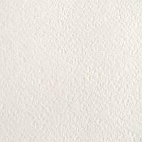 """Бумага рисовальная марки """"А"""" формат А4 плотность 200 г/м2 Лилия Холдинг, 103279"""