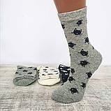 Носки женские коты Aura Via, фото 2