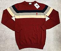 Свитшот мужской U.S. Polo Assn D8872 разноцветный