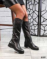 Демисезонные сапоги кожаные черные
