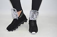 Ботинки женские зимние Eclipse 542-8-1 чёрные замша, фото 1