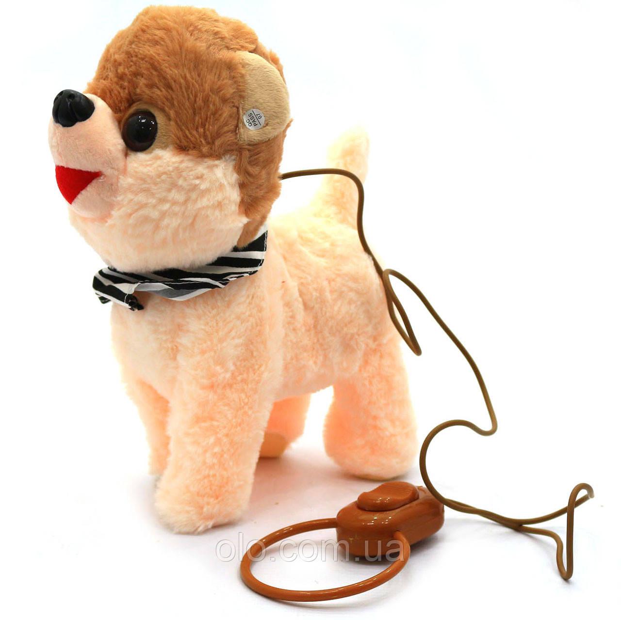 Интерактивная мягкая игрушка «Щенок на поводке 5», ходит, виляет хвостом, лает, поет на англ, 23 см (M667)