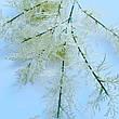 Искусственная ветка для новогоднего декора ( белая 85 см), фото 2