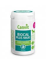 Canvit Biocal Plus Maxi (Канвит Биокаль Плюс Макси) минерал добавка для собак крупных пород 230 г