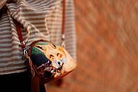Маленька жіноча сумочка Coquette Лисиця