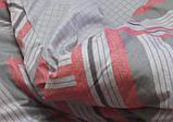Евро. Комплект постельного белья с компаньоном S339, фото 2