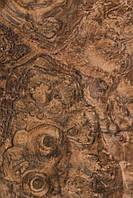 Шпон кореня горіха американського ( сорт А), фото 1