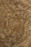 Шпон корень золотой мадроны, фото 1