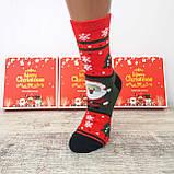 Новорічні жіночі шкарпетки на подарунок комплект 4 пари, фото 2