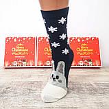 Новорічні жіночі шкарпетки на подарунок комплект 4 пари, фото 5