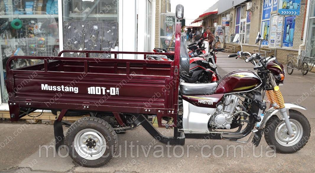 Трицикл (грузовой мотороллер,муравей) MT200ZH-4V