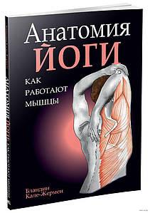 Анатомія йоги. Як працюють м'язи. Бландин Кале-Жермен