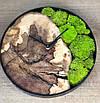 Часы в металлическом ободке и мха (диаметр до 30 см), фото 3