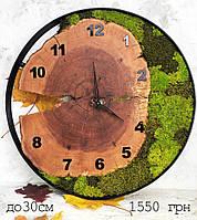 Часы в металлическом ободке и мха (диаметр до 30 см)