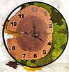 Часы в металлической ободке и мха (диаметр 45-50 см), фото 4