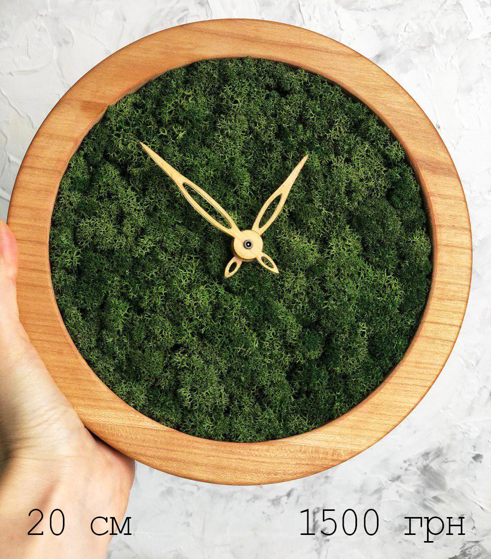 Часы настенные МОХ с мхом диаметр 20 см