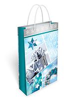 Новогодние пакеты ламинированные 27х17см (П-30078)
