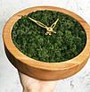 Часы настенные из мхом диаметр 25 см, фото 2