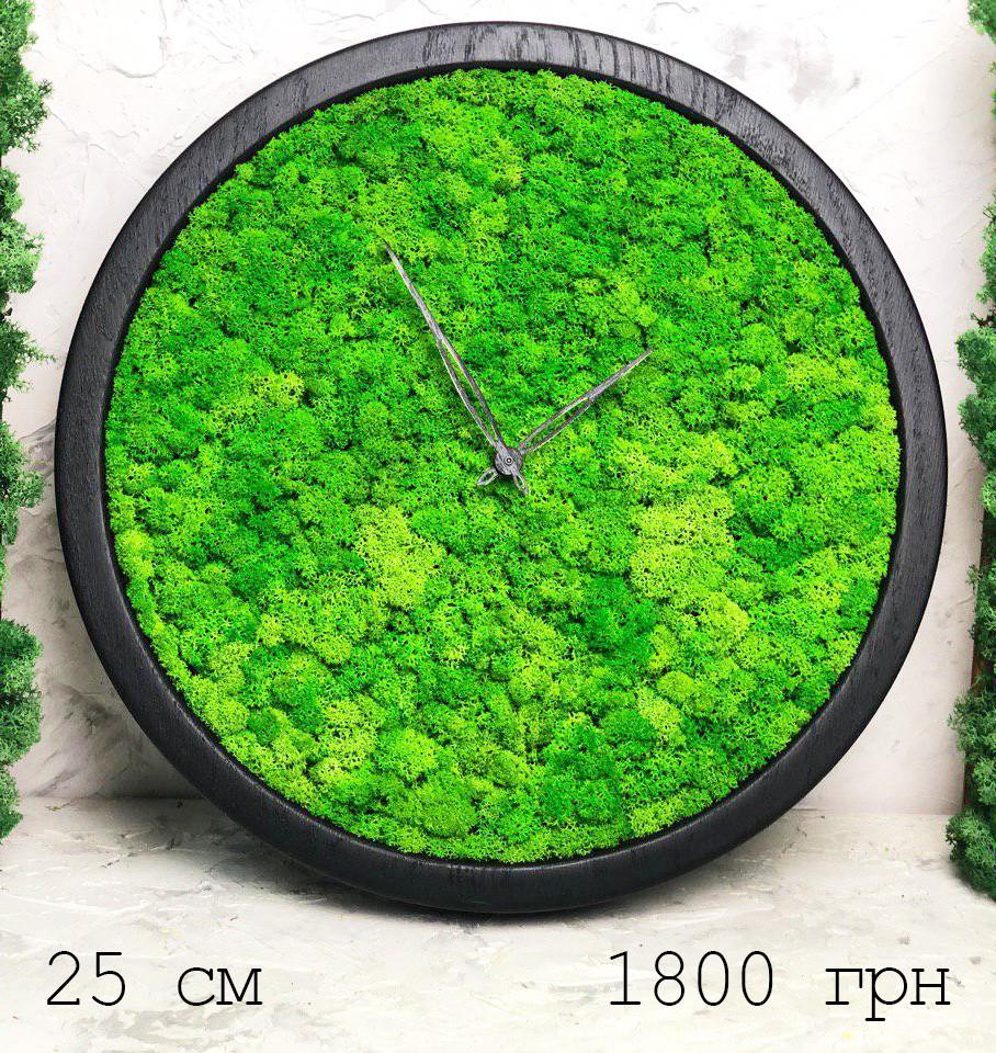 Часы настенные из мхом диаметр 25 см