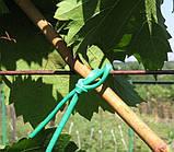Кембрик (агрошнурок) для подвязывания 4 мм зеленый 1 кг (Cordioli), фото 2