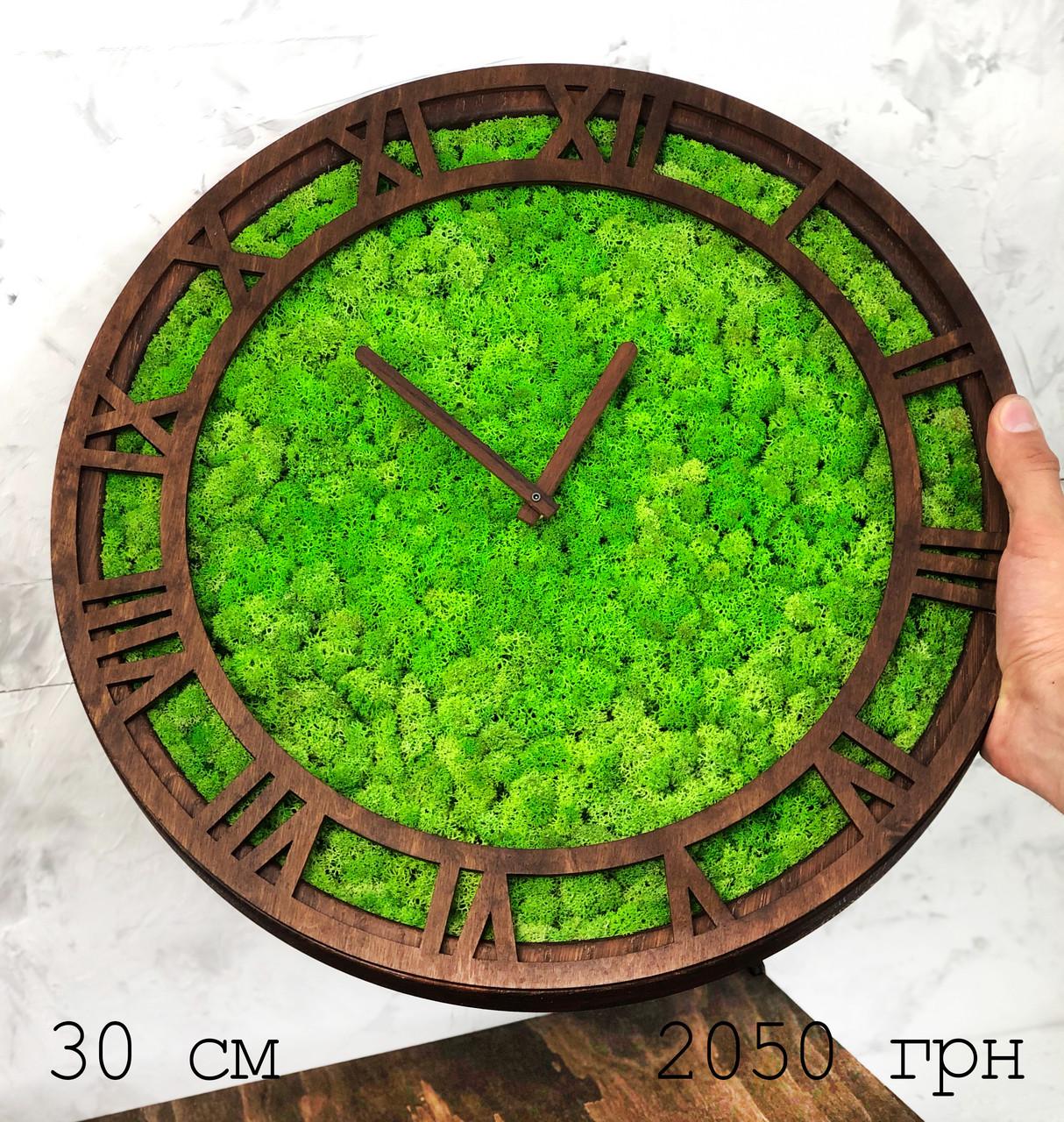 Часы настенные МОХ с мхом диаметр 30 см