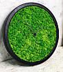 Часы настенные из мхом диаметр 35 см, фото 3