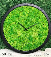 Часы настенные МОХ с мхом диаметр 50 см