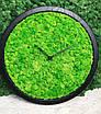 Часы настенные МОХ с мхом диаметр 50 см, фото 3