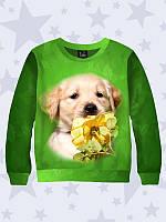 Свитшот детский Собака с розой