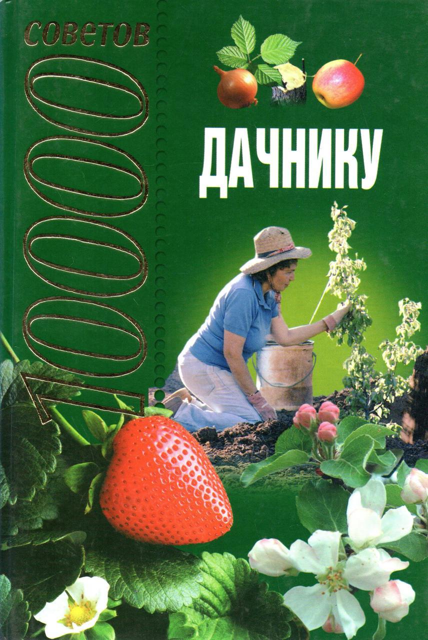 1000 советов дачнику. Н. А. Баранова, Л. С. Конева