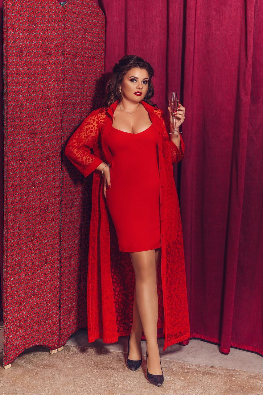 Женское нарядное платье двойка большого размера.Размеры:48-58.+Цвета