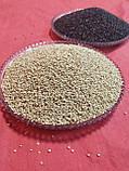Кіноа - корисне зернове насіння біле 0,5 кг, фото 4