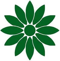 Хризантема -предварительный заказ на весну / лето 2020 г