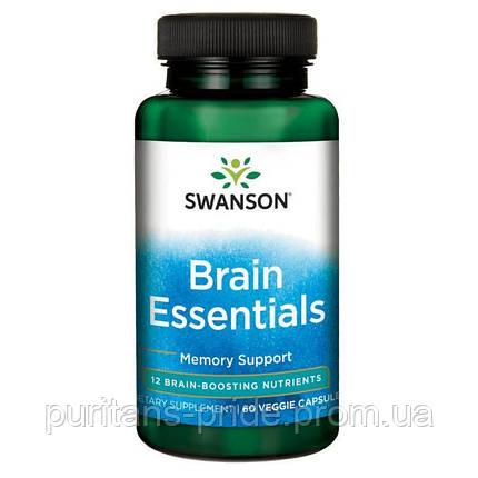Комплекс для здоров'я мозку, Swanson Brain essentials 60 capsules, фото 2