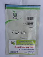 Насіння огірка Атлантіс F1 / Atlantis F1 (Бейо / Bejo) 1000 сем - бджолозапилюваний, ранній гібрид (42-45 днів