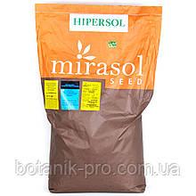 Семена подсолнечника Гиперсол КЛ под Евролайтинг (высокоолеиновый)
