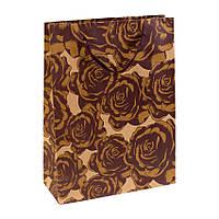 Сумочка подарочная Gift Bag Native Сомбрероус Бумага 20х15х6 см Коричневый (19331)