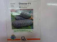 Насіння огірка Директор F1 (Nunhems) 50 насінин - партенокарпік, ранній гібрид (45-50 днів)