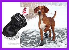Ботинки Тrixie Walker Care Protective Boots XL для собак, 2шт.