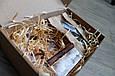 Набор кормушка для птиц на окно + семена для кормления птиц. Модель Теремок, фото 3